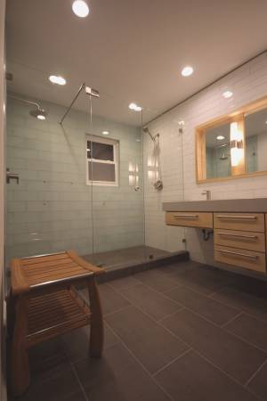 In Line Shower with support bar